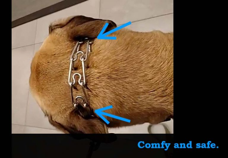 how to use chain collar