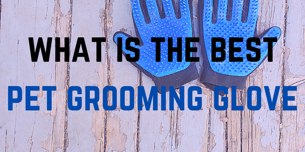 what is the best pet grooming glove
